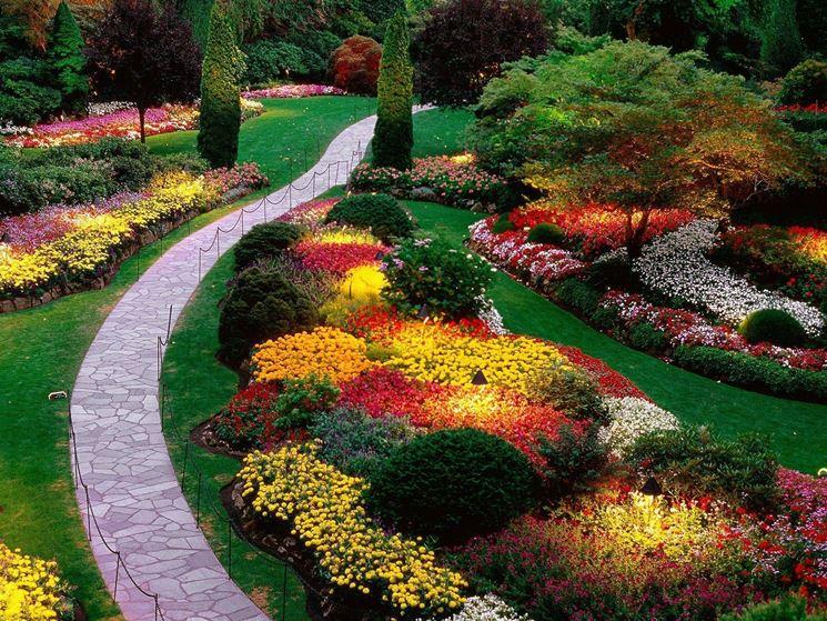 Piante da giardino come avere un proprio spazio verde vesto casa - Piante invernali da giardino ...