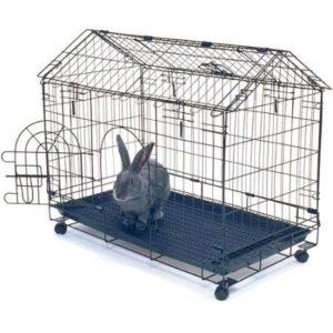 gabbia per coniglio nano