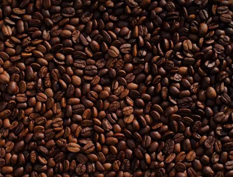 chicchi di caffè lejeune crema viso