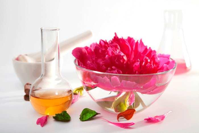 chimica naturale dei cosmetici crema antirughe