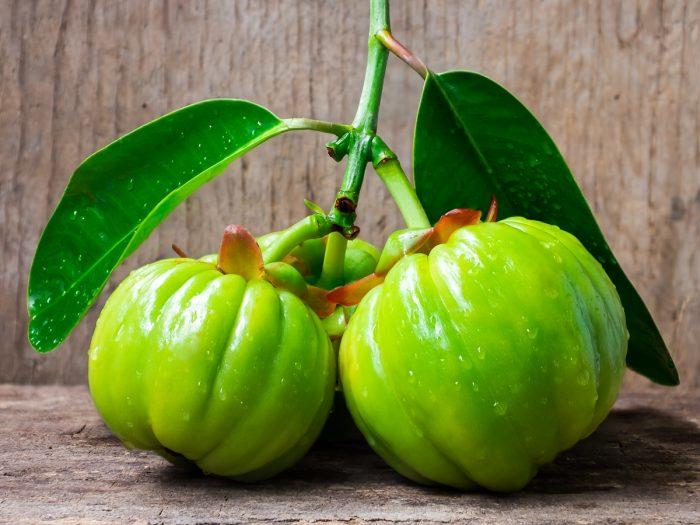 frutto garcinia cambogia